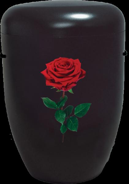 Creativ-Line Rose schwarz