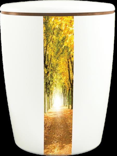 Solid-Line Waldweg weiß